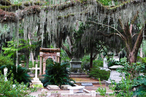 Fun things to do in Savannah : Bonaventure Cemetery in Thunderbolt GA.