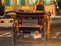 Savannah Carriage Tours - Fun things to do in Savannah GA