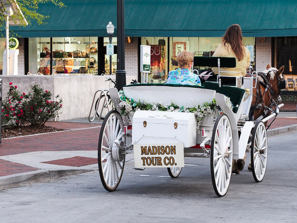 Fun Things To Do In Savannah Ga Madison Tour Company
